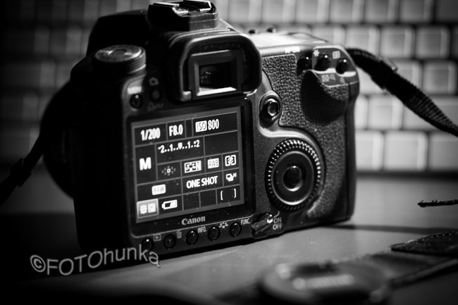 Wichtige Fototipps für Einsteiger von FOTOmauz