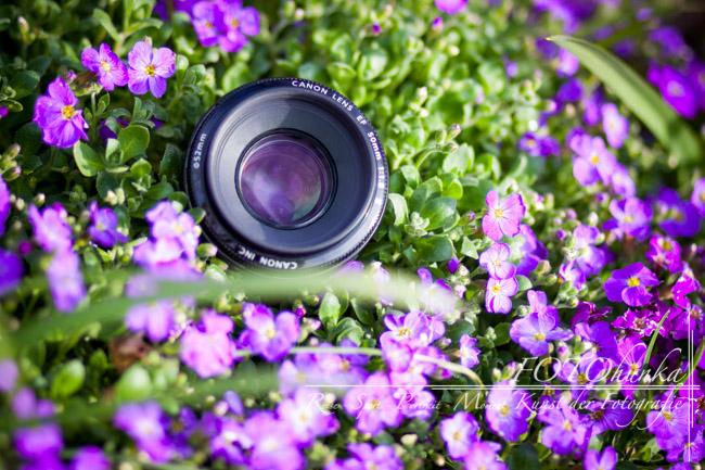 50mm Objektiv Tipps von FOTOmauz